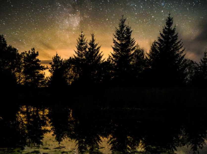 view of the pond on a starry night