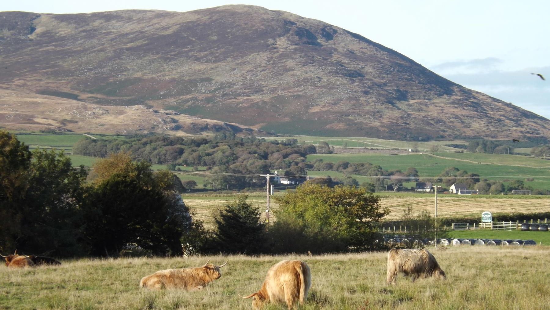 The Criffel pictured from Southerness, Dumfries and Galloway Scotland