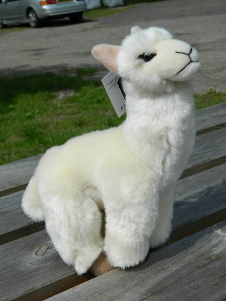 Soft Toy - Alpaca