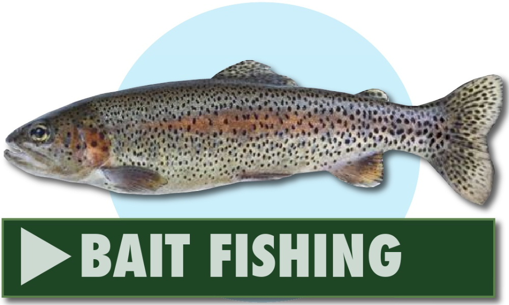 Bait fishing at Greenhill Fishery, Dalbeattie, Dumfries and Galloway, Scotland