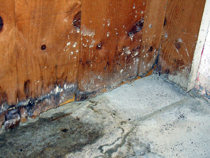 Ryedale Remedials Ltd of Dumfries offer basement proofing services