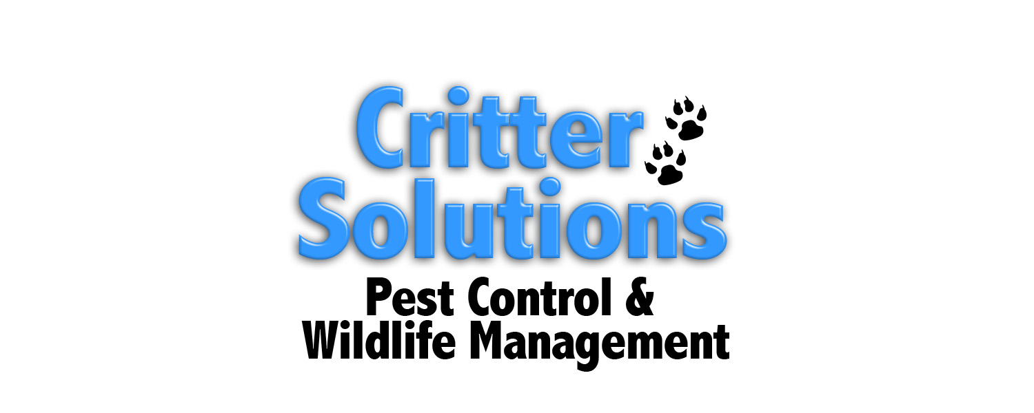 Critter Solutions