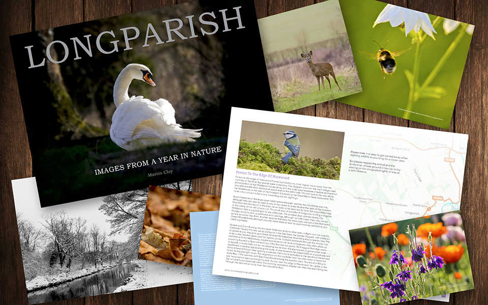 Longparish - Images From A Year In Nature : eBook